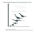 Dreadnoughtus Mass Comparison Chart (Imperial).jpg