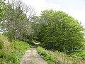 Dungarthill Estate road - geograph.org.uk - 540757.jpg