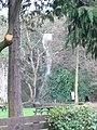 Dyserth waterfall - geograph.org.uk - 657678.jpg