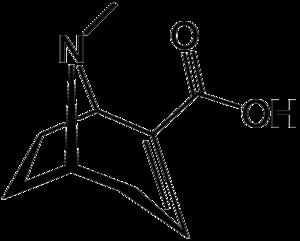 Ecgonidine - Image: Ecgonidine