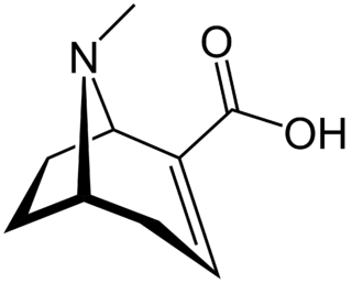 Ecgonidine chemical compound