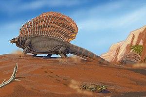 Paleontology in Texas - Edaphosaurus.