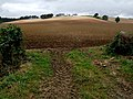 Edge of the Wolds near Tetford - geograph.org.uk - 576019.jpg