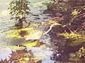 Egret in the Pool in Central Park 1.jpg