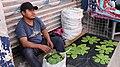 Ein Tag in Puebla 01.jpg