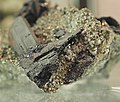 Enargite and Pyrite Specimen 8.JPG