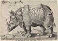 Enea Vico after Albrecht Dürer - Rhinoceros.jpg