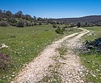 Entzia - Camino 01.jpg
