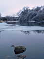 Eramosa River after 2013 Ice Storm 02.jpg