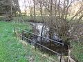 Espinasse (Puy-de-Dôme) ruisseau Chanteranne près Pont du Moulin.JPG