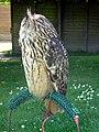 Eurasian Eagle Owl (Bubo bubo) - geograph.org.uk - 1710744.jpg