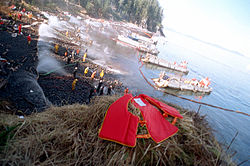 Clean-up efforts after Exxon Valdez oil spill.