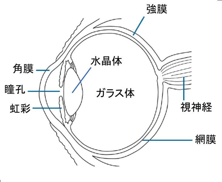 Fileeye Diagram Jag Wikimedia Commons