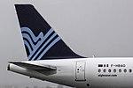 F-HBAO A320 Aigle Azur tailfin OPO.jpg