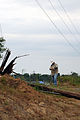 FEMA - 44016 - Utility Worker Assessing Damage in Yazoo Mississippi.jpg