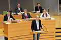 Falk Neubert im Plenarsaal.jpg