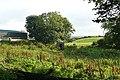 Farm at Clogher - geograph.org.uk - 968286.jpg