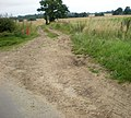Farm track from the road - geograph.org.uk - 1432030.jpg