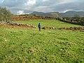 Farmland near Brwyn-llynau - geograph.org.uk - 623302.jpg