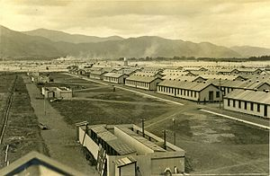 Featherston prisoner of war camp - Featherston Camp in 1916