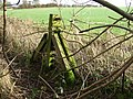 Fence post - geograph.org.uk - 312425.jpg