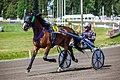 Ferus Galax and Antti Teivainen.jpg