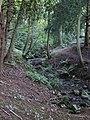 Ffynnon St Dyfnog - St Dyfnog's Well, Llanrhaeadr, Denbighshire, Wales 03.jpg