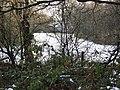 Field behind Chamberlain Way - geograph.org.uk - 1632739.jpg