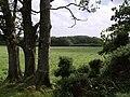 Field near Little Swingdon - geograph.org.uk - 488355.jpg