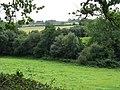 Fields near The Brook - geograph.org.uk - 947401.jpg