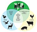 Figure 3- Examples of Zoonotic Diseases and Their Affected Populations (6323431516) (cropped).jpg