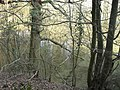 Filled quarry, Bushy copse - geograph.org.uk - 385781.jpg