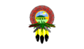 Flag of the Mandan, Hidatsa & Arikara Nation.png