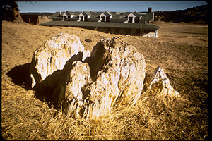 Florissant Fossil Beds National Monument FLFO1234.jpg