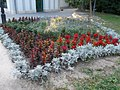 Flower bed. English Garden in Tata. Hungary.JPG