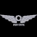 Flylyfe company log.png