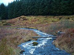 Footbridge on drove road to Kintrawe - geograph.org.uk - 98133.jpg