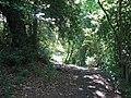 Footpath 2895 climbing away from Burton Mill Pond - geograph.org.uk - 1379286.jpg