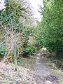 Footpath to Fifield - geograph.org.uk - 1180450.jpg