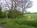 Footpath to Great Lodge Entrance - geograph.org.uk - 2379996.jpg