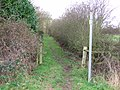 Footpath to New Gorse Fox Covert. - geograph.org.uk - 312669.jpg