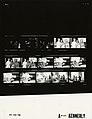 Ford A9122 NLGRF photo contact sheet (1976-04-03)(Gerald Ford Library).jpg