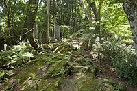 Forest in Mt.Kaba 02.jpg