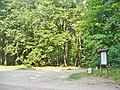 Forst Grunewald (Grunewald Forest) - geo.hlipp.de - 41399.jpg