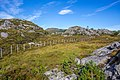 Fosnavåg, Norway - panoramio (1).jpg