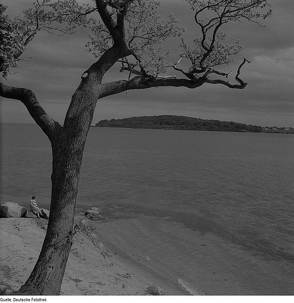 File:Fotothek df ps 0001480 Landschaften ^ Insellandschaften.jpg