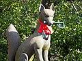 Fox (246092989).jpeg