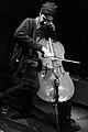 Fred Lonberg-Holm 2013 03.JPG