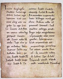 Freising manuscript.jpg