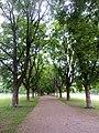 Frogner Park Walkway 2.JPG